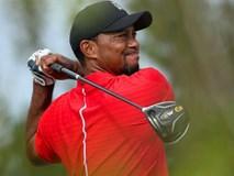 Tay golf Tiger Wood bị tống giam