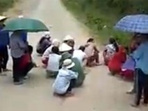 Dân chặn ôtô chở lợn để xin tiền lái xe