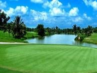 Kinh doanh golf: 'Đút túi'... 1 tỷ/ngày