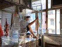 Số phận người giúp việc ở Hồng Kông: ngủ trong nhà vệ sinh, trên nóc tủ lạnh