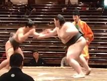 """Nhẹ hơn 70kg, """"bé vẫn hạ to"""" chấn động võ đài sumo"""