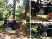 Phát hiện người đàn ông tử vong bên gốc cây nghi do nắng nóng