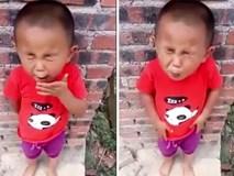Biểu cảm hài hước của cậu bé khi lần đầu ăn chua gây bão mạng xã hội ngày hôm nay