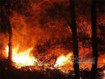 Cháy rừng phòng hộ Sóc Sơn lớn nhất trong lịch sử