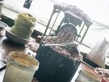 Mỡ lợn ôi thiu vứt ngổn ngang trên sàn cáu bẩn, ruồi nhặng bâu đầy