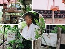 Cụ ông tự tay trồng và chăm sóc một vườn hoa ngát hương bên mộ vợ đã khuất