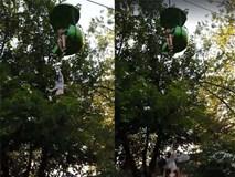 Cô bé 14 tuổi rơi từ đu quay cao 7,5m trong công viên giải trí