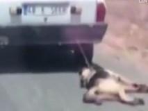 Chú chó bị chủ buộc vào đuôi ôtô, kéo lê trên đường