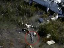 Rơi xuống vùng đầm lầy sau khi vụ tai nạn máy bay, nạn nhân còn bị cá sấu xông tới ăn thịt