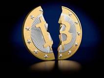 Triệu phú Bitcoin: Tiền rơi vào đầu, du lịch 4 năm ròng không hết