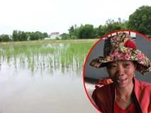 Nỗi đau của người mẹ mất cả hai con do đuối nước trên ruộng lúa ở Long An