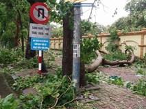 Hình ảnh tan hoang sau cơn bão số 2 ở miền Trung