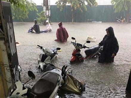 Clip: Người dân đổ xô ra đoạn đường ngập để bắt cá giữa tâm bão số 4