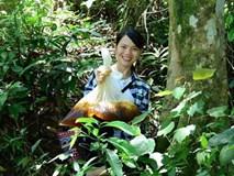 """Nữ nhà báo bỏ việc, về quê băng rừng, lội suối """"đặt tên"""" cho đặc sản"""