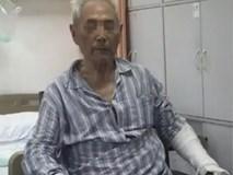 Sơ ý làm đổ cơm, ông lão 86 tuổi bị con trai đánh đập tàn nhẫn khi đang nằm trên giường bệnh