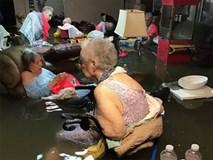 Bức ảnh gây sốc trong bão Harvey