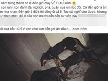 Xót xa cảnh cả đàn chó gắn bó với gia đình suốt 5 năm bị đánh bả chết tại Hà Nội