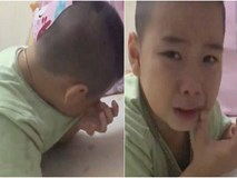 Cậu bé khóc lóc phản đối cái kết NPX: Đã tìm ra fan chân chính của Phan Quân!