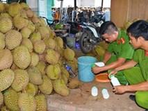 Kon Tum: Bắt quả tang sầu riêng nhúng hóa chất chuẩn bị ra Hà Nội