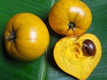 Người Việt chê trứng gà (lê ki ma) chín rụng không ăn còn trên Amazon rao bán tiền triệu