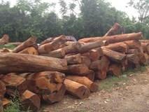 Đại gia mơ gian nhà cổ gỗ mít: Chồng 2 tỷ chờ 2 năm chưa có