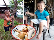 Bé trai bị đâm xuyên não kháu khỉnh tuổi lên hai