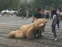 Mang xe 8 tỷ và gấu khổng lồ tỏ tình, chàng trai vẫn bị từ chối phũ