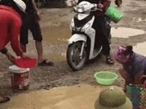Người dân mang kích điện, rổ rá ra bắt cá ngay giữa đường