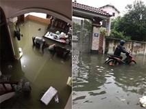 Tin mới áp thấp nhiệt đới: Mưa lớn suốt đêm, Nghệ An – Hà Tĩnh ngập sâu trong biển nước