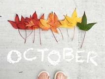 Lời nhắc nhở cho 12 con giáp trong tháng 10