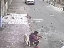 Bi hài clip thanh niên ngồi bấm điện thoại, bị chó tè bậy lên người