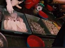 Cảnh báo: Mực nhiễm độc, giá siêu rẻ tràn lan ngoài chợ