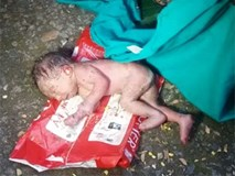 Chỉ vì là con gái, em bé sơ sinh bị cha mẹ vứt vào thùng rác, khi phát hiện thấy kiến bu đầy người