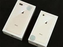 iPhone 8 chính hãng âm thầm về nước: 'Chưa bao giờ ế đến thế!'