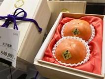 50 triệu đồng một quả hồng Nhật