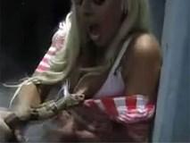 Chuyện lạ: Con rắn đáng thương lăn ra chết tức tưởi sau khi cắn vào ngực cô gái trẻ