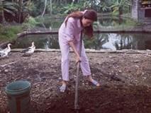 Phạm Hương lại ghi điểm với hình ảnh giản dị diện đồ bộ cuốc đất ở quê nhà