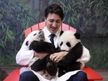 """Những khoảnh khắc """"gây sốt"""" cộng đồng mạng của Thủ tướng Justin Trudeau"""