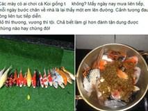 Sau đợt mưa Đà Nẵng, chàng trai mang cá Koi bạc triệu đi kho khiến dân mạng tranh cãi
