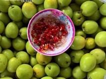 Cuối tháng 11 về, táo chua đầu mùa 45.000 đồng/kg đã tới tấp người đặt mua