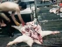 Sự thật về thịt lợn giá rẻ bán tràn lan, vừa rã đông giòi đã bò lổm nhổm