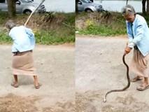 """Cụ bà bá đạo, tay không quật con rắn tới tấp ở Thái Lan: """"Đừng có mà bắt chước tôi!"""""""