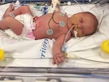 Con tử vong sau 3 ngày chào đời vì mẹ nhiễm một loại vi khuẩn phổ biến lúc mang bầu