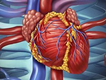 """Để tránh bị bệnh tim """"nhấn chìm"""", đây là nguyên tắc giúp bạn sống sót"""