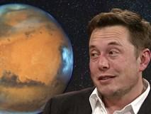 5 dự đoán táo bạo về tương lai công nghệ của Elon Musk