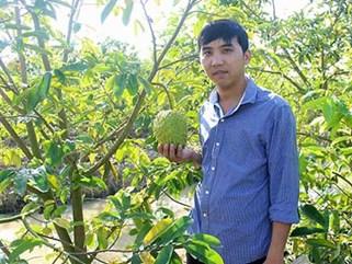 """""""Đút túi"""" 2 triệu/ngày từ 1.300 cây mãng cầu xiêm trồng trên đất lúa"""