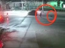 Đang đi đường, người phụ nữ bất ngờ bị chó Ngao Tây Tạng lao đến tấn công
