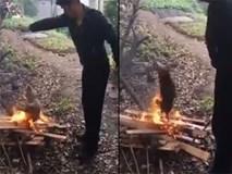 Kinh hoàng cảnh người đàn ông thiêu sống con chó tội nghiệp
