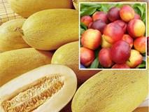 """7 loại quả Trung Quốc tràn lan ở Việt Nam, cẩn thận kẻo mua nhầm mà ăn phải """"thuốc độc"""""""