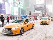 """Cả thế giới đang hứng chịu cái lạnh tồi tệ, dự đoán """"mùa đông lạnh nhất 100 năm qua"""""""